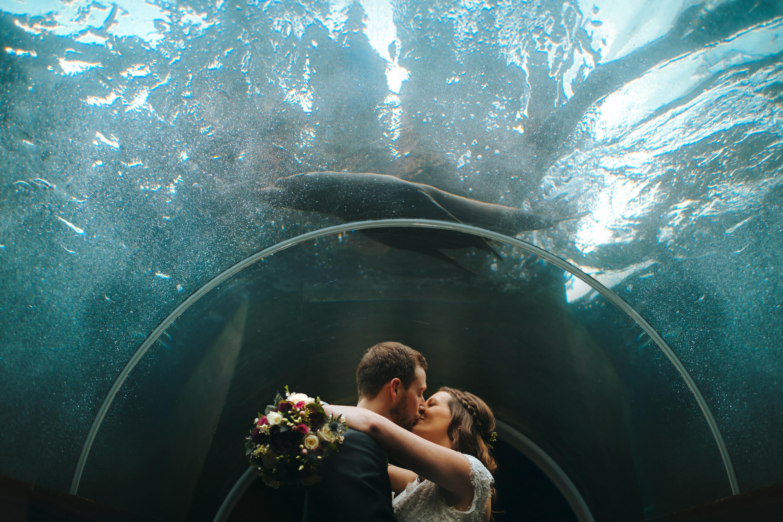 kissing at a Bristol Zoo Wedding